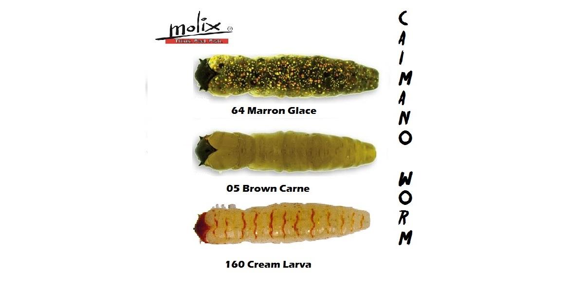 """Caimano worm 1,5"""""""