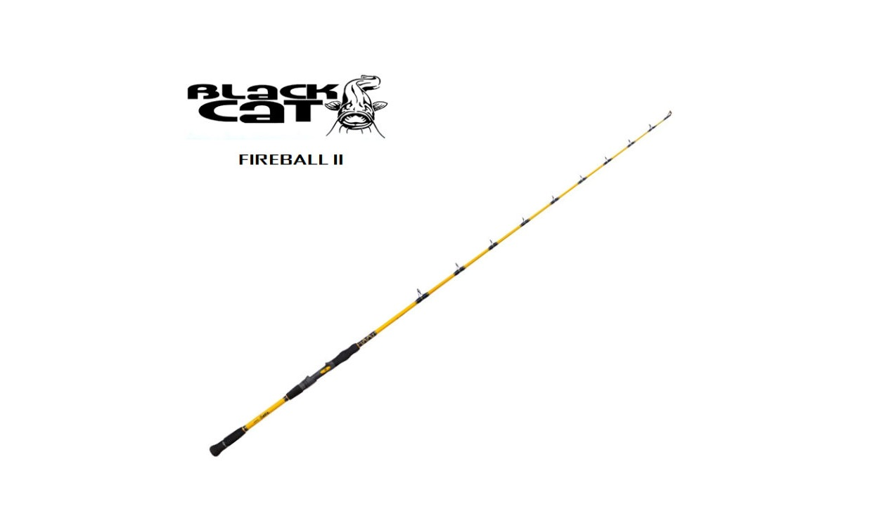 Canna Black Cat FIREBALL 2 COD 16405200